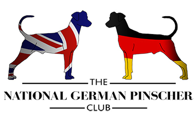 THE NATIONAL GERMAN PINSCHER